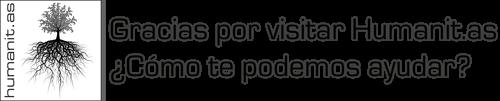 Servicios para Empresas - Cursos de Idiomas, Traducciones, Inmersión, etc.