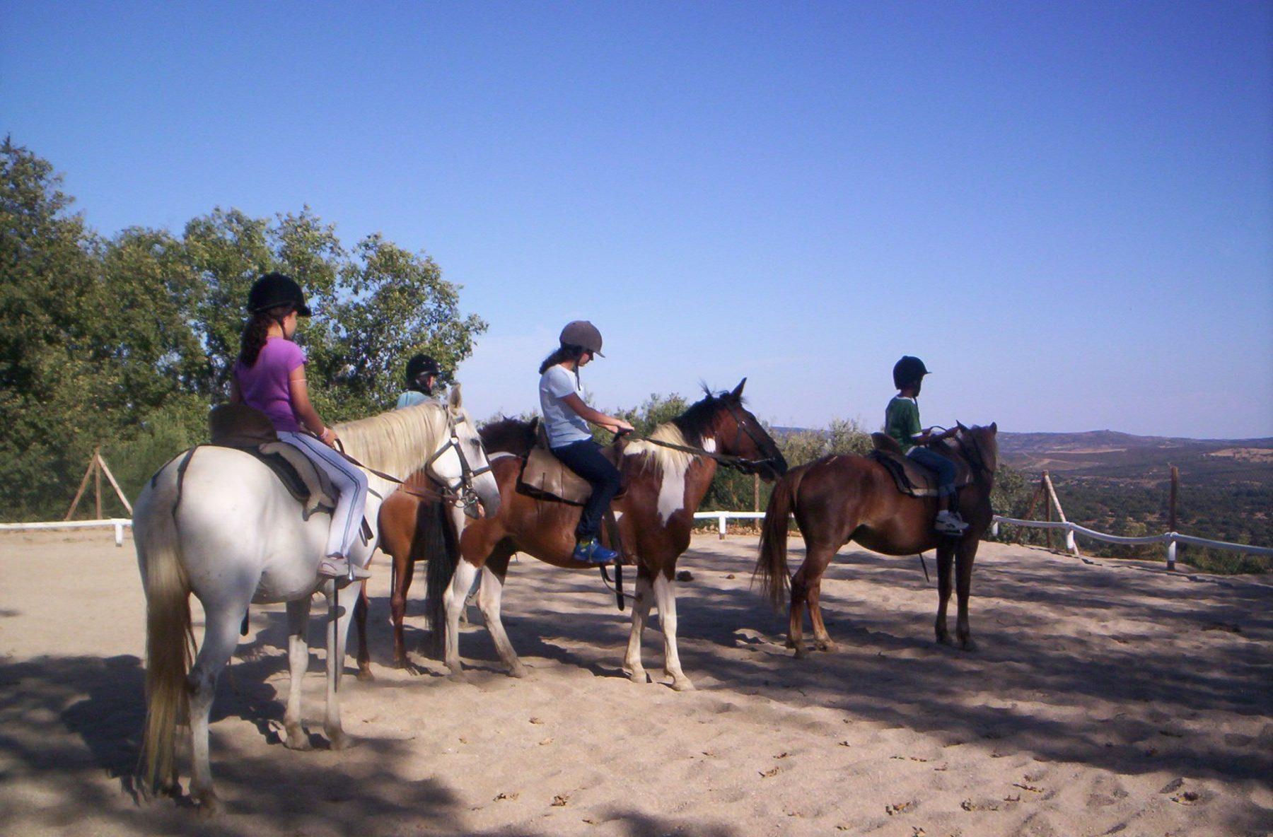 Deportes desde montar en caballo hasta natación, fútbol y escalada